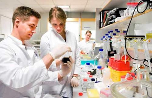 生物医学工程